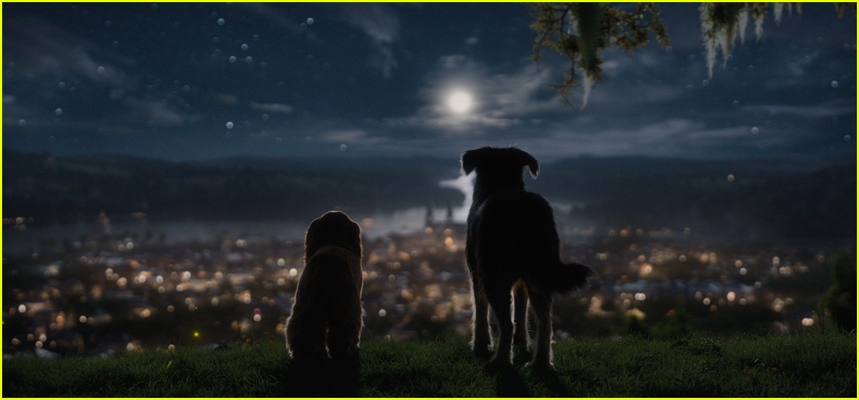 disneys live action lady and tramp gets new trailer 01.4371017