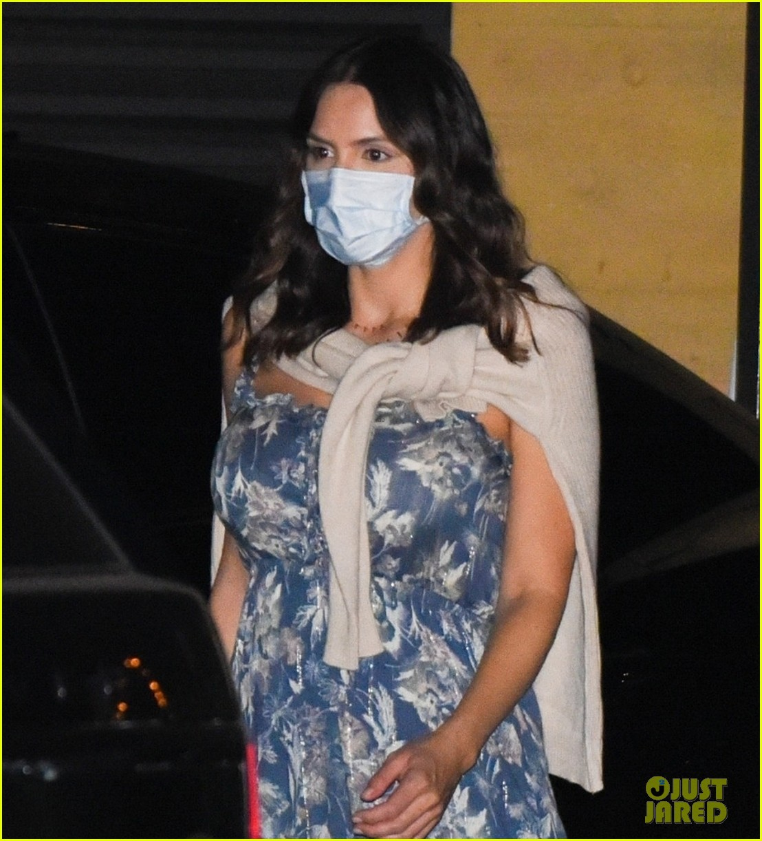 katharine mcphee out for dinner with david foster and mom 024493595