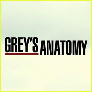 'Grey's Anatomy' Promotes Two Stars to Series Regulars!